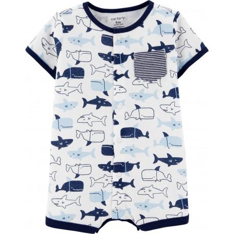 ENTERIZO SHARK